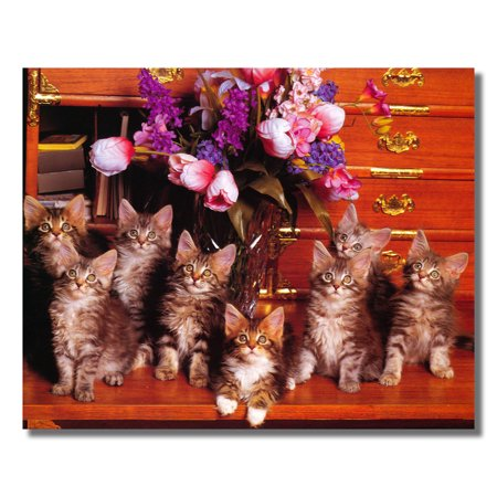 Cat Kittens on Table with Floral Arrangement Photo Wall Picture 8x10 Art Print ()