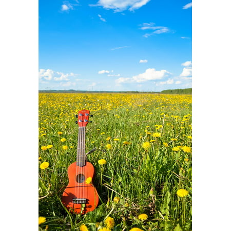 Canvas Print Guitar Sky Flower Ukulele Summer Stretched Canvas 10 x (Shy Flower)