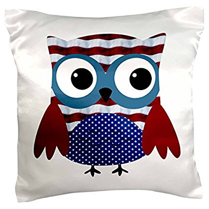 3dRose Cute USA Patriotic Owl Illustration In Red, White, and Blue, Pillow Case, 16 by 16-inch](Patriotic Pillows)