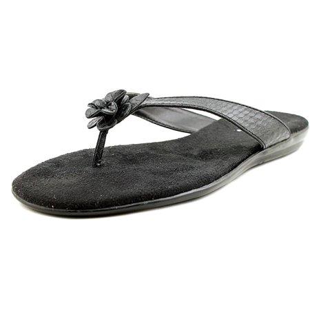 334434296f8 Aerosoles - Aerosoles Branchlet Women Open Toe Leather Black Flip Flop  Sandal - Walmart.com