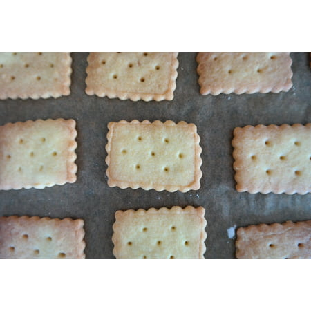 - Laminated Poster Cookie Springerli Aniseed Biscuits Springerle Poster Print 11 x 17