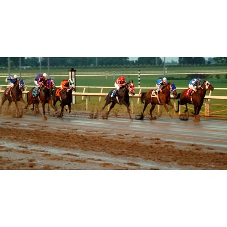 Horse Racing Photo (Racing Quarter Horse Photo License)
