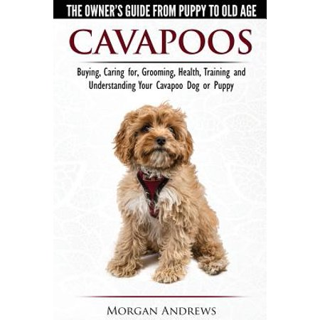 Buy Panda Puppy (Cavapoos - The Owner's Guide from Puppy to Old Age - Buying, Caring For, Grooming, Health, Training and Understanding Your Cavapoo Dog or)