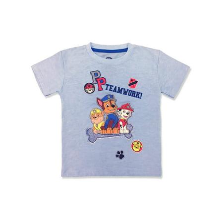 Short Sleeve Character Tee Shirt (Little Boys)