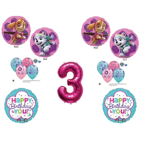 3rd Birthday Skye Everest Paw Patrol Girl Balloons Decoration Supplies Party