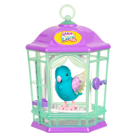 Little Live Pets Bird With Cage, Skye Twinkles (Little Giant Pit)