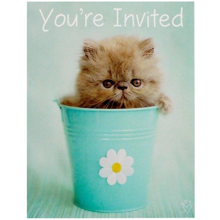 rachaelhale Glamour Cats Invitations, 8pk (Cat In The Hat Invitations)