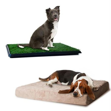Large Memory Foam Dog Bed and Puppy Potty Trainer Set by PETMAKER