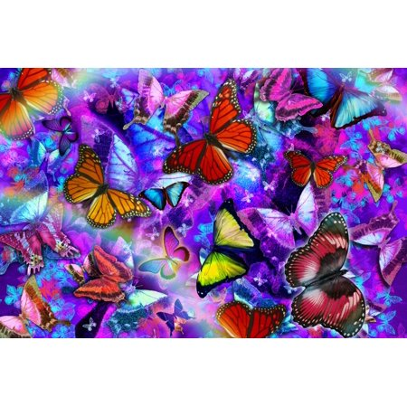 Dizzy Colored Butterfly Explosion Poster Print by Alixandra Mullins