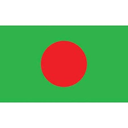 Bangladesh Flag On A Stick 12