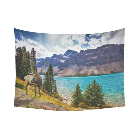 Phfzk Beautiful Blue Sky Cloud Wall Art Home Decor  Deer On The Bank Of Azure Lake Rocky Mountain Tapestry Wall Hanging 60 X 80 Inches