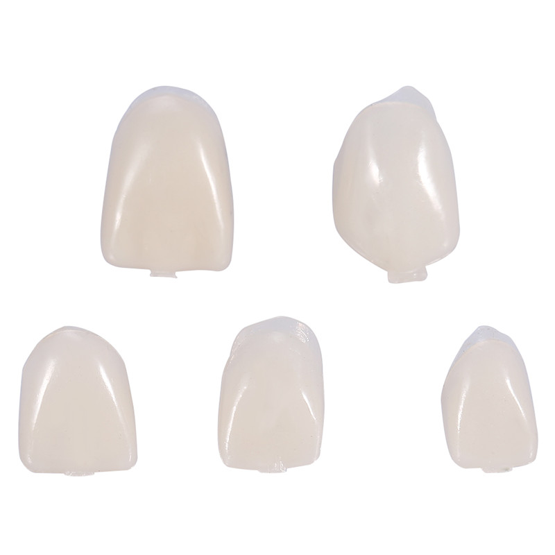 HURRISE 50Pcs/Box Temporary Dental Crown Temporary Realistic Oral Care Resin Crown Teeth,Back Teeth - image 1 of 7