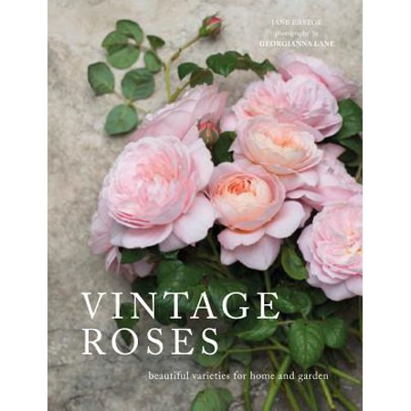 Vintage Roses : Beautiful Varieties for Home and