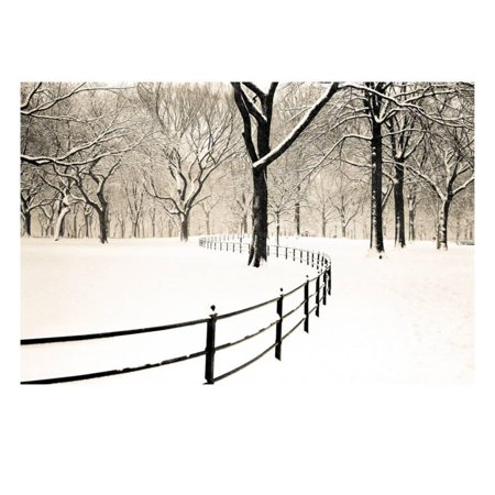 Central Park Snow (Central Park Snow Print Wall Art By Andrew Geiger )