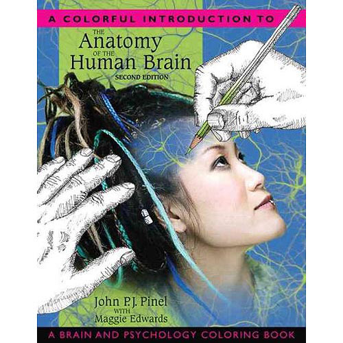 an introduction to the human brain The human brain an introduction to the human nervous system human brain wikipedia, the human brain is the central organ of the human nervous system, and with the.