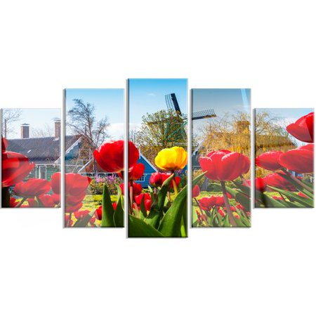 Design Art Tulips in the Netherlands Village' 5 Piece Photographic Print on Metal (The Netherlands Tulips)
