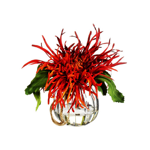 Silk Flower Depot Spider Mum in Glass Vase