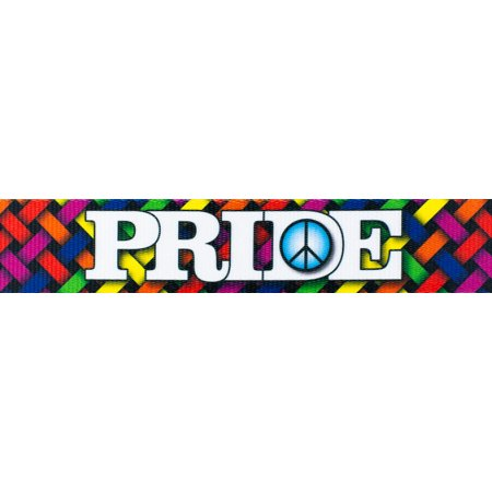 Country Brook Design | 1 Inch Pride and Peace Polyester Webbing for $<!---->