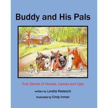 Buddy And His Pals  True Stories Of Horses  Llamas And Cats