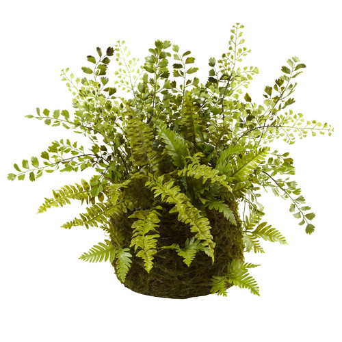 Nearly Natural Mixed Fern with Twig and Moss Basket