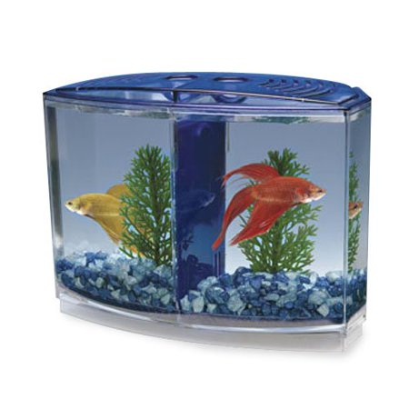 Penn plax betta bow front 2 compartment fish tank kit for Betta fish tanks walmart