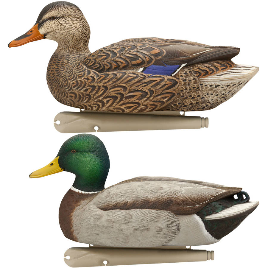 Avian X Top Flight Duck Decoy, Open Water Mallard, Pack of 6