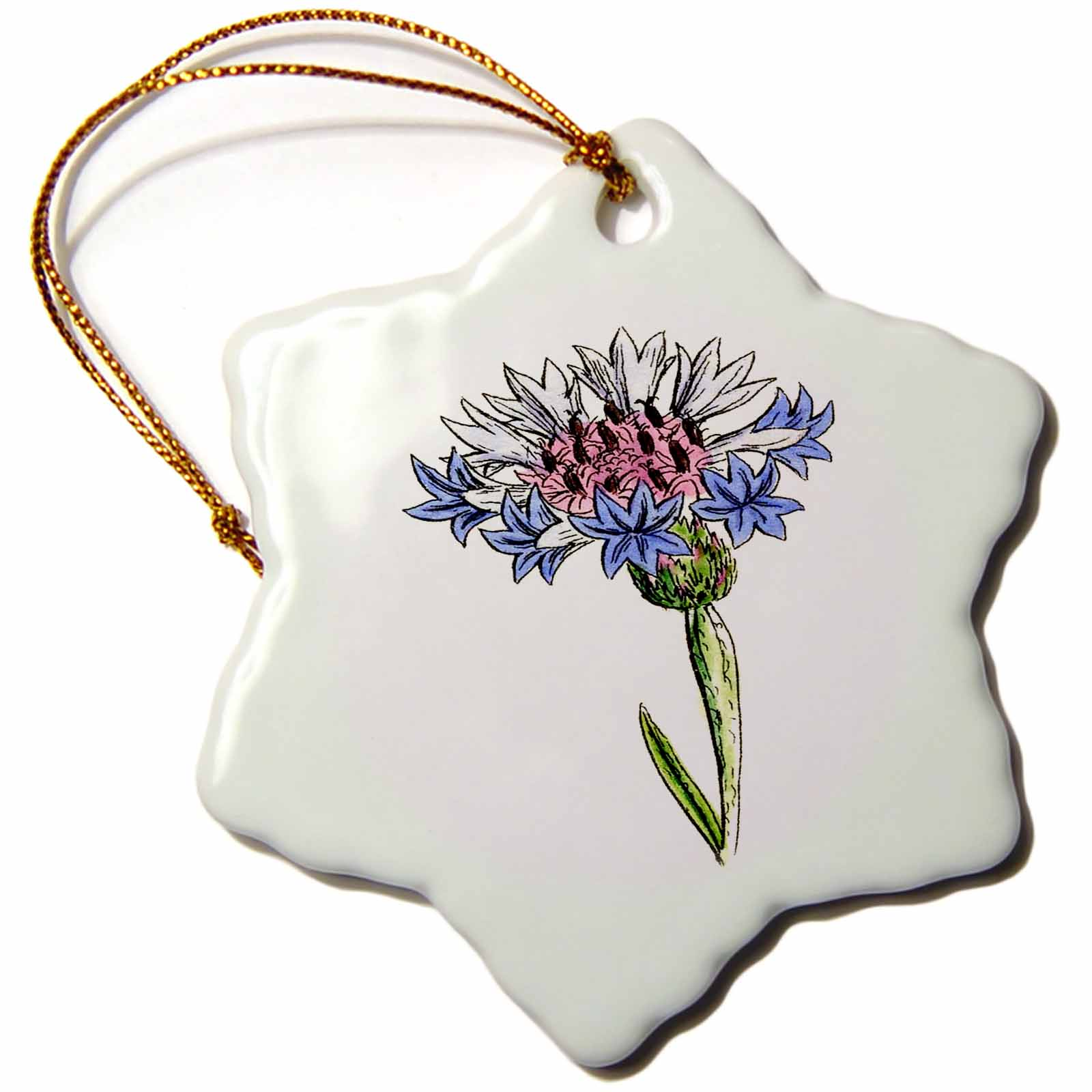 3dRose Picture of 1859 Drawing Of A Thistle Plant, Snowflake Ornament, Porcelain, 3-inch