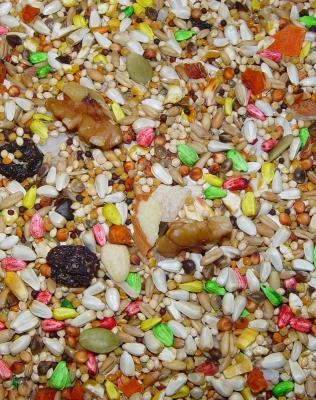 Higgins Safflower Gold Natural Blend Conure and Cockatiel Bird Food, 3 lb by HIGGINS PREMIUM PET FOODS