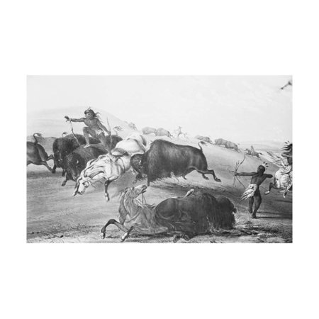 Buffalo Fighting with Indians Print Wall Art