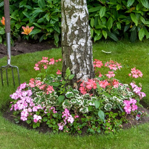 Shady Tree Roll Out Flower Mat