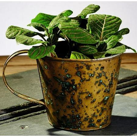 Antique Primitive Vintage Brass Gold Color Vintage Gathering Cup for Plants, Flowers, Candle, Desk, Table