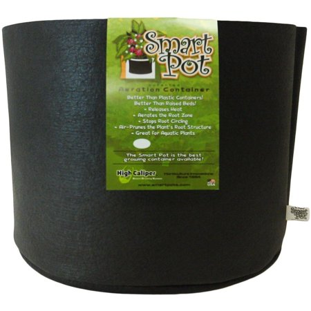 Smart Pot 10 Gallon 1 pack ()