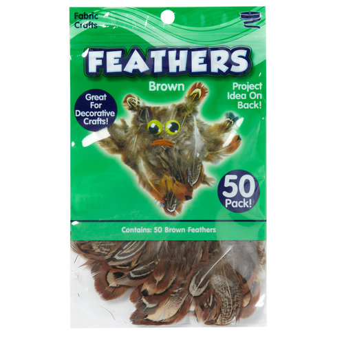Kids Craft Feathers, Brown
