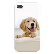 Apple Iphone Custom Case 4 4s Snap on - Cute Golden White Puppy Dog on Furniture