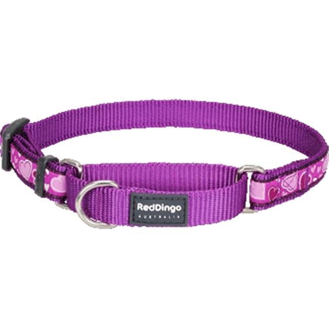 Red Dingo MC-BZ-PU-ME Martingale Dog Collar Design Breezy Love Purple, Medium