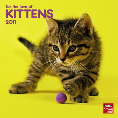 For the Love of Kittens 2011 Calendar