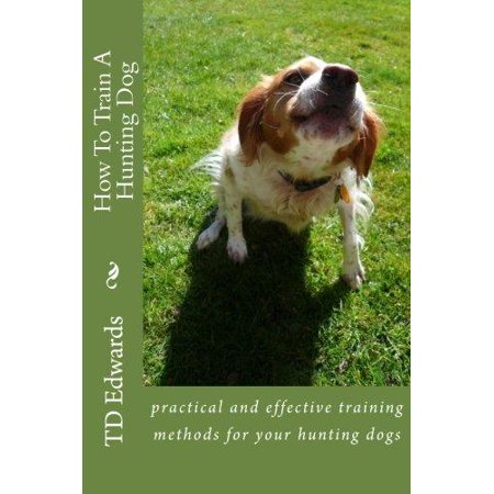 How To Train A Hunting Dog