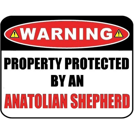 Warning Property Protected by an Anatolian Shepherd 9 inch x 11.5 inch Laminated Dog Sign