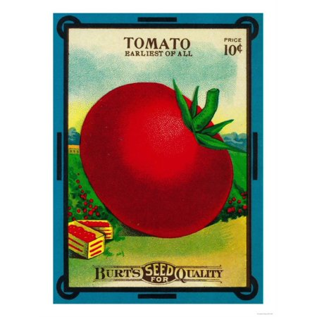 Tomato Press - Tomato Seed Packet Print Wall Art By Lantern Press