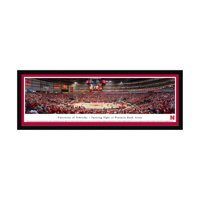 "Nebraska Cornhuskers 16"" x 42"" Sculpted Select Frame Team Panoramic Wall Art - No Size"