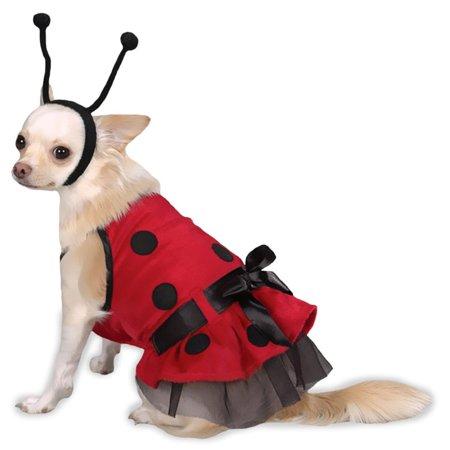 Casual Canine Lady Bug Costume, Size: LARGE