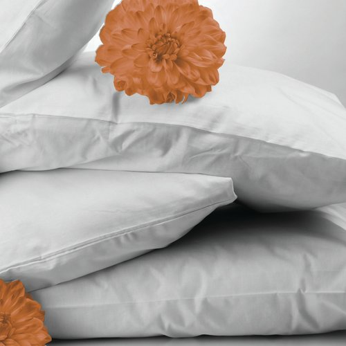Bicor Featherfull Down and Feathers Standard Pillow (Set of 2)