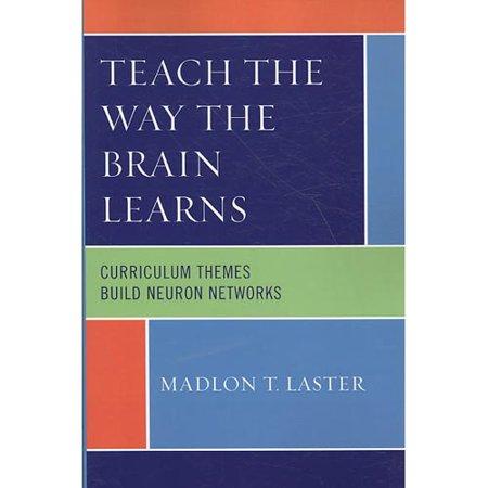 Teach the Way the Brain Learns : Curriculum Themes Build Neuron Networks