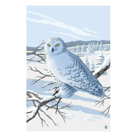 Snowy Owl   By Lantern Press