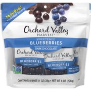 Blueberry Chocolate Fruit Multi Pack, 8 oz, 8 count