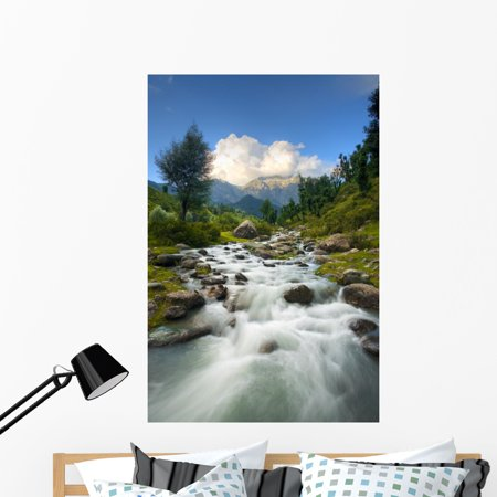 Himalayan Mountains and Stream Wall Mural by Wallmonkeys Peel and Stic