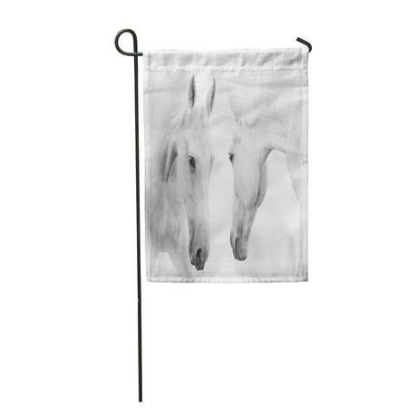SIDONKU Wild White Horses Portrait Head Stallion Love Bend Garden Flag Decorative Flag House Banner 12x18 -