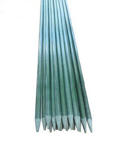 Attractive EcoStake 7 Feet,3/8 Inch Dia, Pack Of 10,