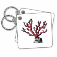 3dRose Print of Red Coral Undersea Plant - Key Chains, 2.25 by 2.25-inch, set of 2