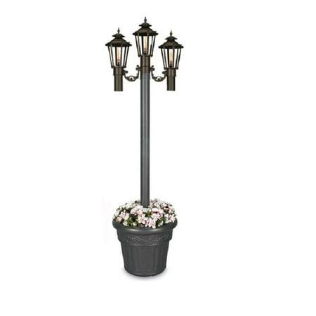 Williamsburg Citronella Flame Planter Lantern-Finish: Iron Textured, Number of Lamp Flames:3